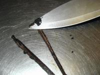 scraping a vanilla bean