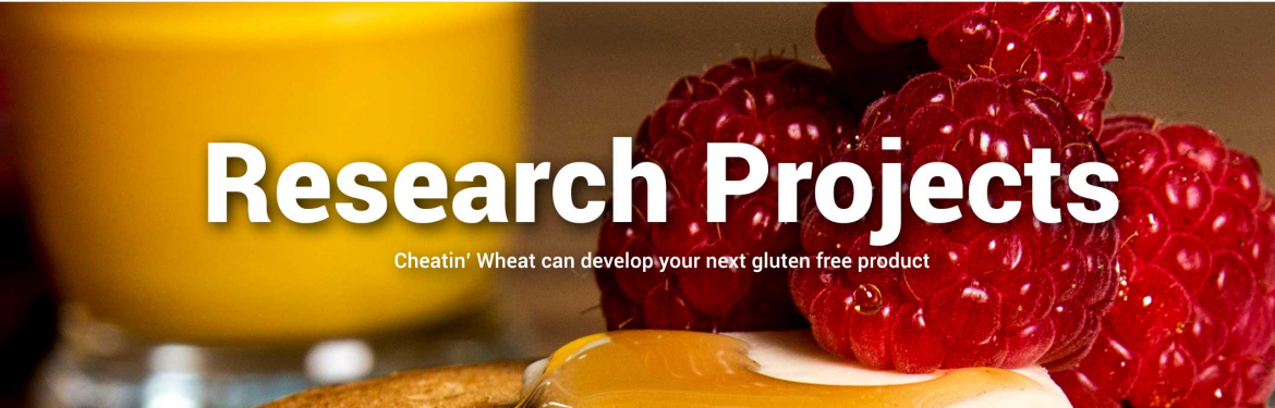 Gluten Free Product Research